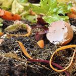 Kompostierung beschleunigen