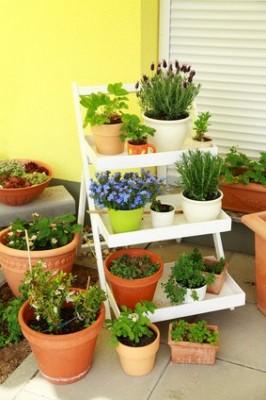 Terrasse gestalten: Nicht nur Pflanzen dekorieren die Terrasse, sondern auch Töpfe, in denen die Pflanzen angebaut werden. Die Auswahl von verschiedenen Blumentöpfen und Behältern ist sehr groß.