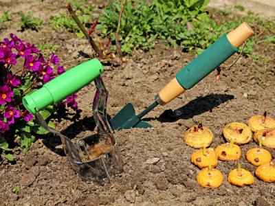 Blumenzwiebeln Pflanzen Frühjahr : blumenzwiebeln im fr hjahr pflanzen gartentipps ~ A.2002-acura-tl-radio.info Haus und Dekorationen