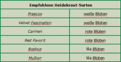 Heidekraut-Sorten