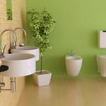 Pflanzen fürs Bad