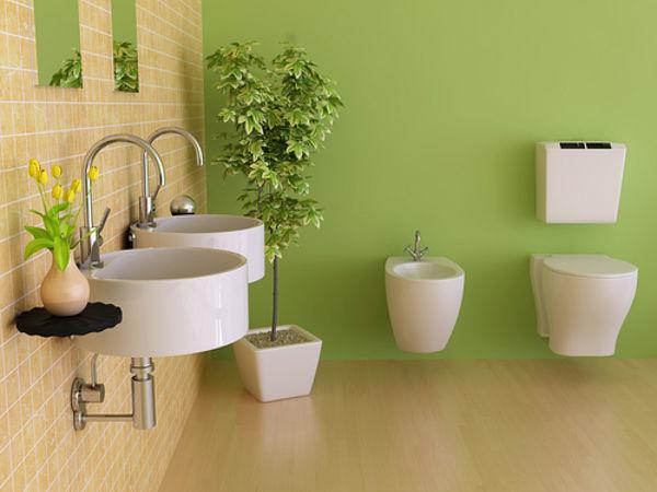 Pflanzen fürs Bad | Gartentipps