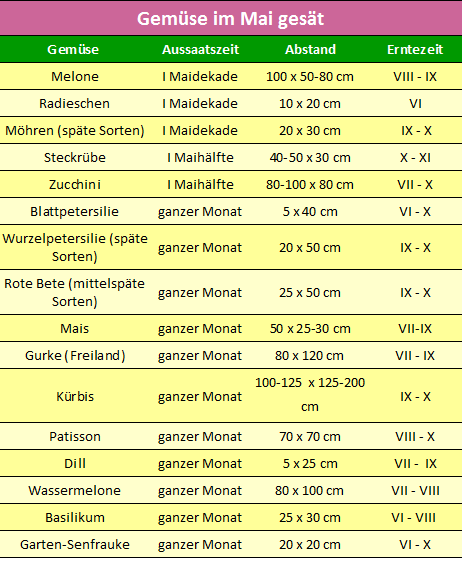 Aussaatkalender – Aussaat im Mai - gemuse-im-mai-gesat