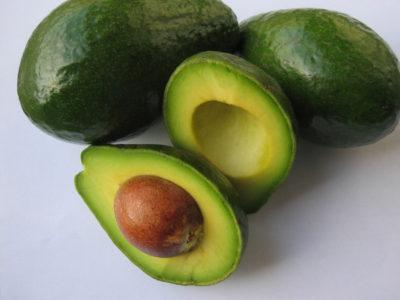 Avocadokern einpflanzen - Avocado selber ziehen