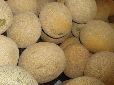 melonen-arten-pflanzen-naehrwerte-3