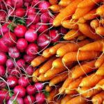 Gemüse richtig lagern